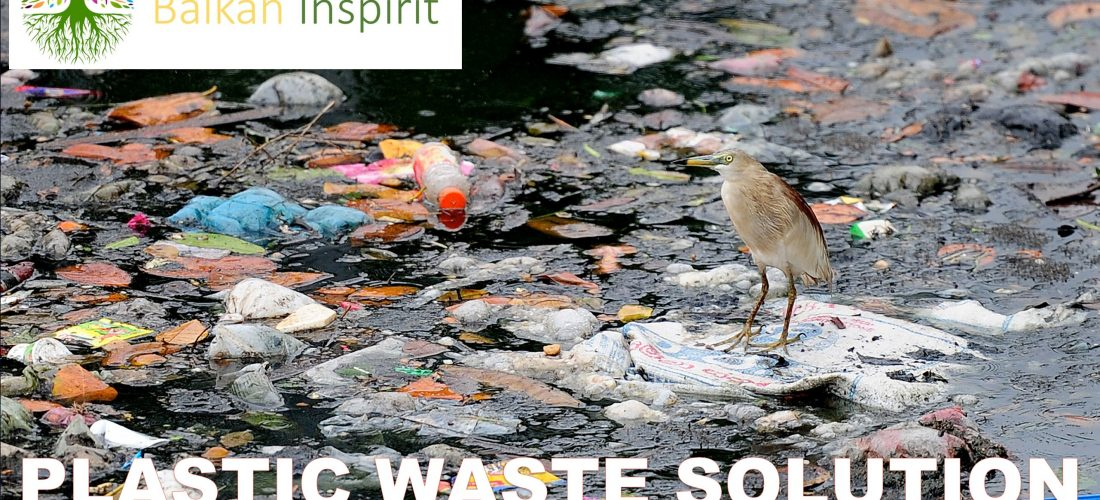 Support the battle against plastic waste pollution!